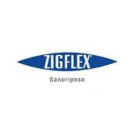 Logo Zigflex